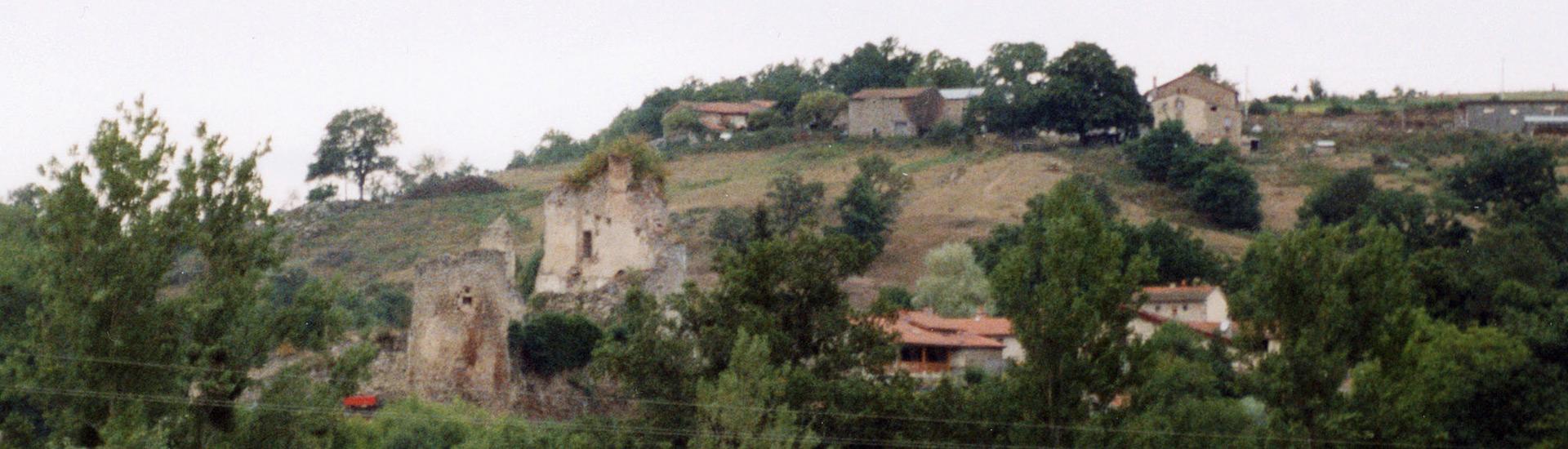 Chateau de Boissonnelle